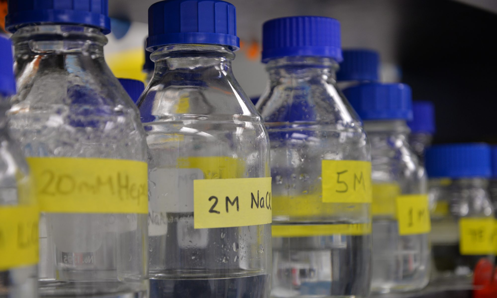 Marignani Discovery Research Laboratory